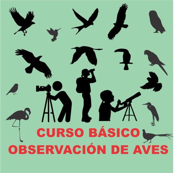 CURSO BÁSICO OBSERVACIÓN DE AVES
