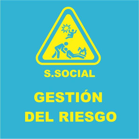 GESTIÓN DEL RIESGO SSEO